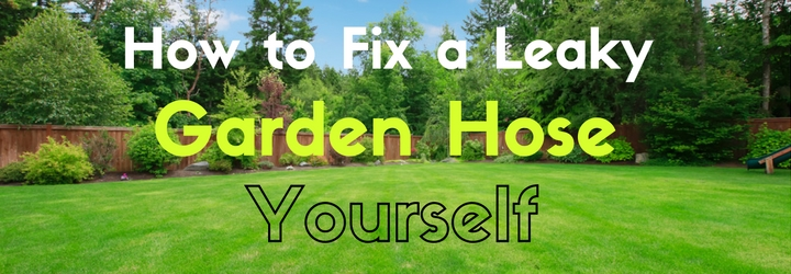 Diy Guide How To Fix A Leaky Garden Hose Yourself